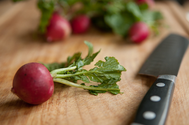 Oh, radishes - you peppery bastards - I love you © Pen Waggener/Flickr