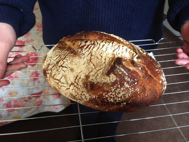 Jake's first sourdough.jpeg