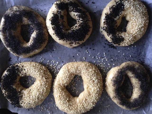 bagels ready to bake.jpeg
